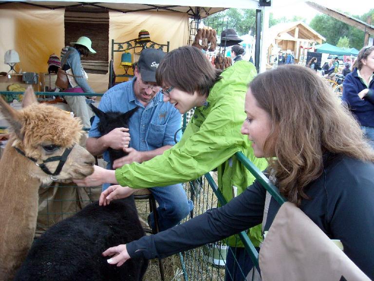 Sarah and Raquel petting the alpacas.