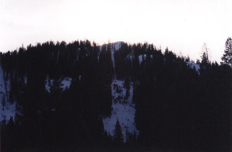 Snow among the trees. (December 31, 2000)