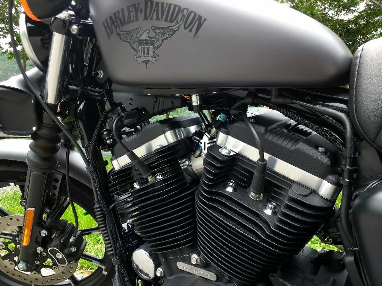 The V-twin engine of a Charcoal Denim Harley-Davidson Sporster Iron 883.