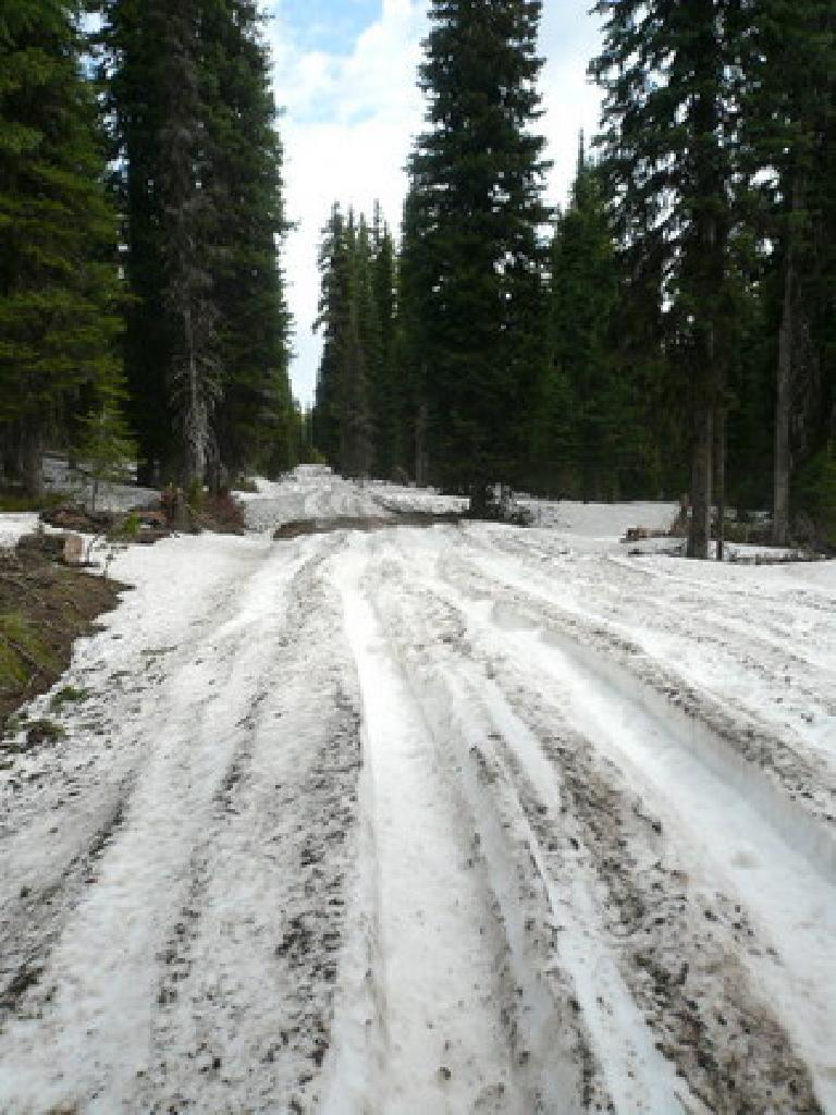 [Day 11] Entering Wyoming and the Tetons, I encountered snow again.  Worse: mud and chainsuck.  Worst: vicious mosquitoes that didn't care if I was wearing full-length clothing and 98% DEET! (June 23, 2008)