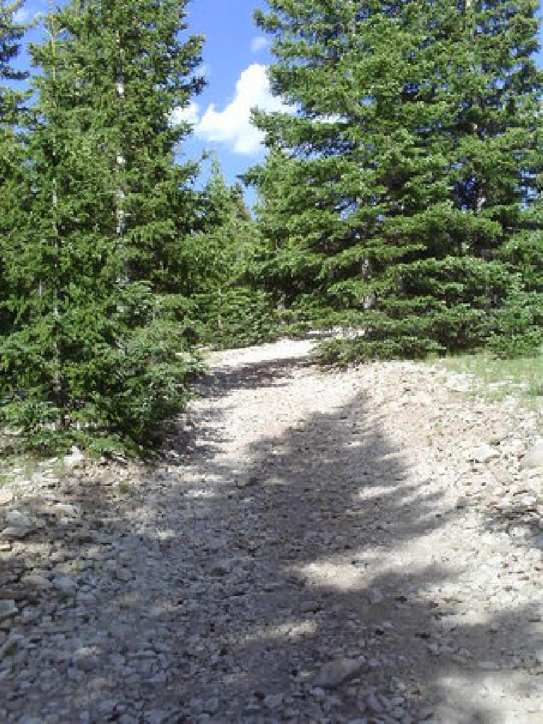 [Day 22] This steep half-mile section of scree in Northern NM was unrideable. (July 4, 2008)