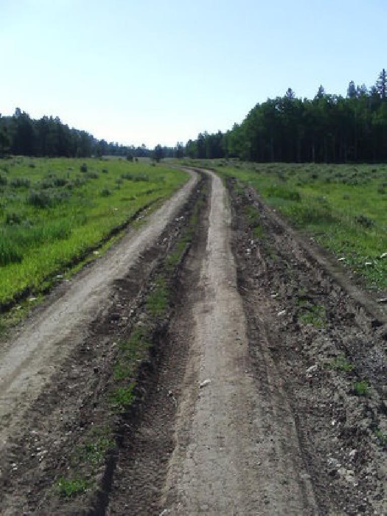 [Day 22, 23] The double-track in Northern NM was extremely rutted, but actually kind of fun! (July 4, 2008)