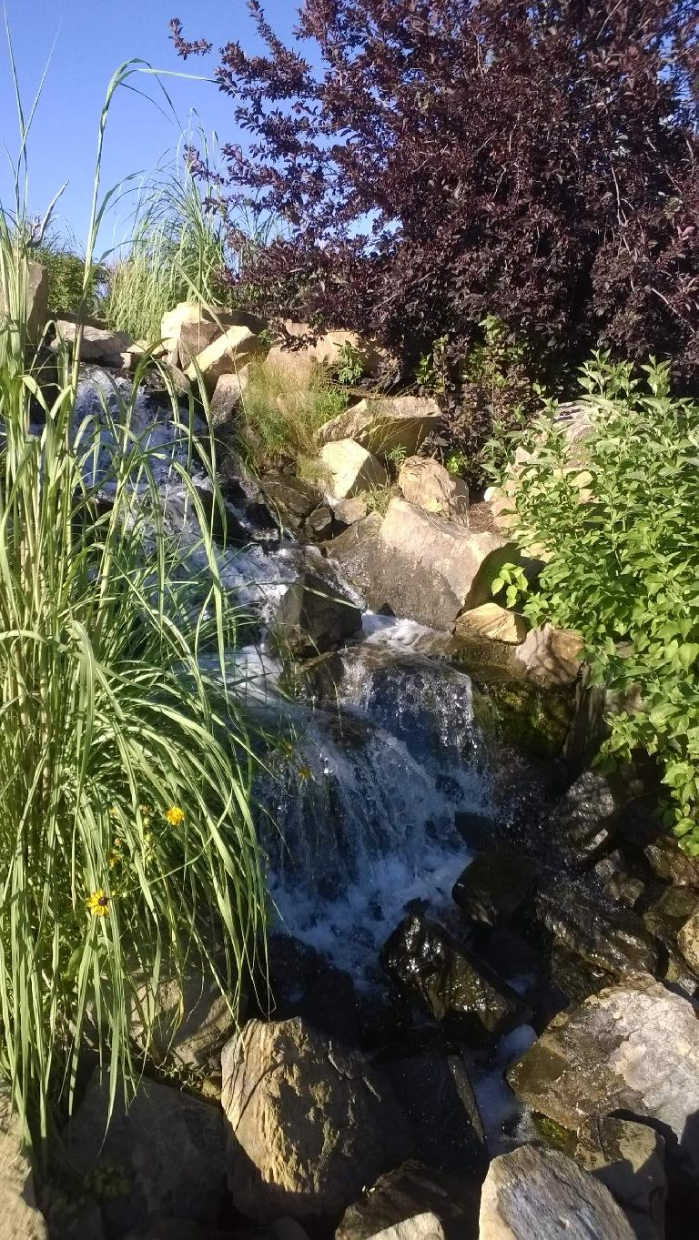 Waterfall at The Rock Garden.