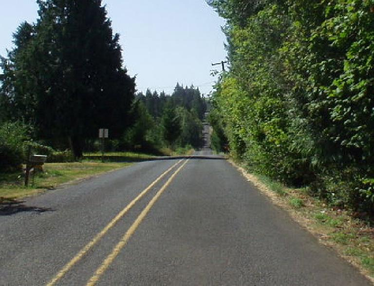 [Mile 55?, 11:05am] After Larch, the course was very undulating as typified by this photo.