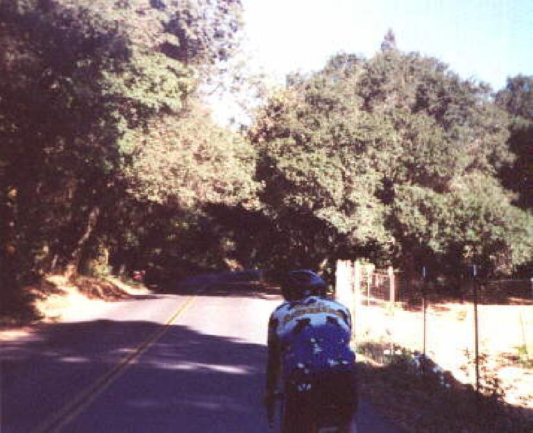 Ken Loo, shaded road, 1998 Tour de Napa Valley