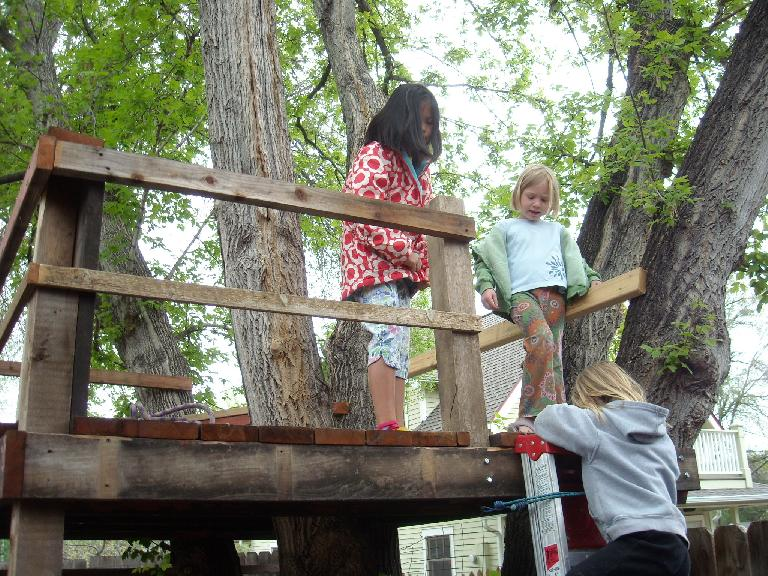 Treehouse at one of the chicken coops.