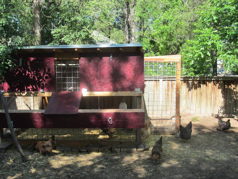 Another chicken coop.