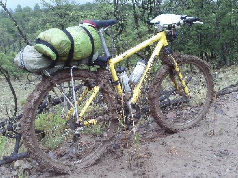 Day 26: It didn't get any better: monsoons, mud, steep climbs, horrible chainsuck, and multiple flat tires through the Gila Wilderness.  But I'd only stop after it got dark and I literally crashed. (July 8, 2008)