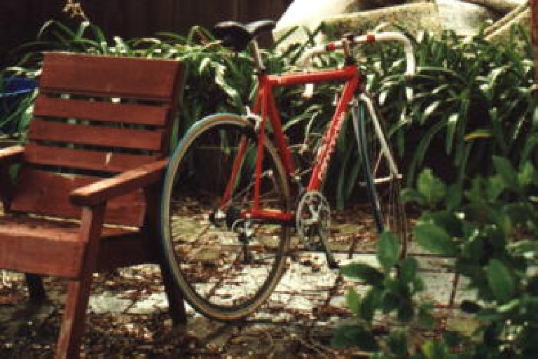 1999 marked her next major componentry upgrade: to 27-speed Campagnolo components!  For a few months we also experimented with some (hideous-looking) green Michelin tires (sorry, Canny). (June 1, 1999)