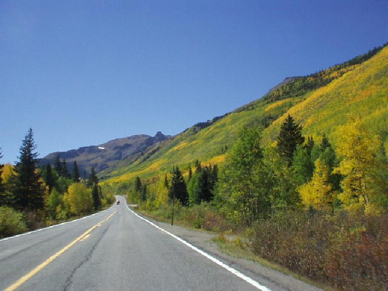 Aspen starts to become even more brilliantly yellow!