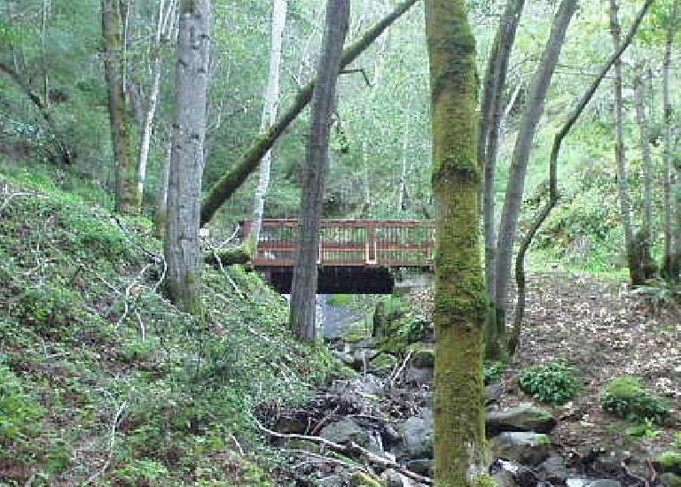 And a bridge...