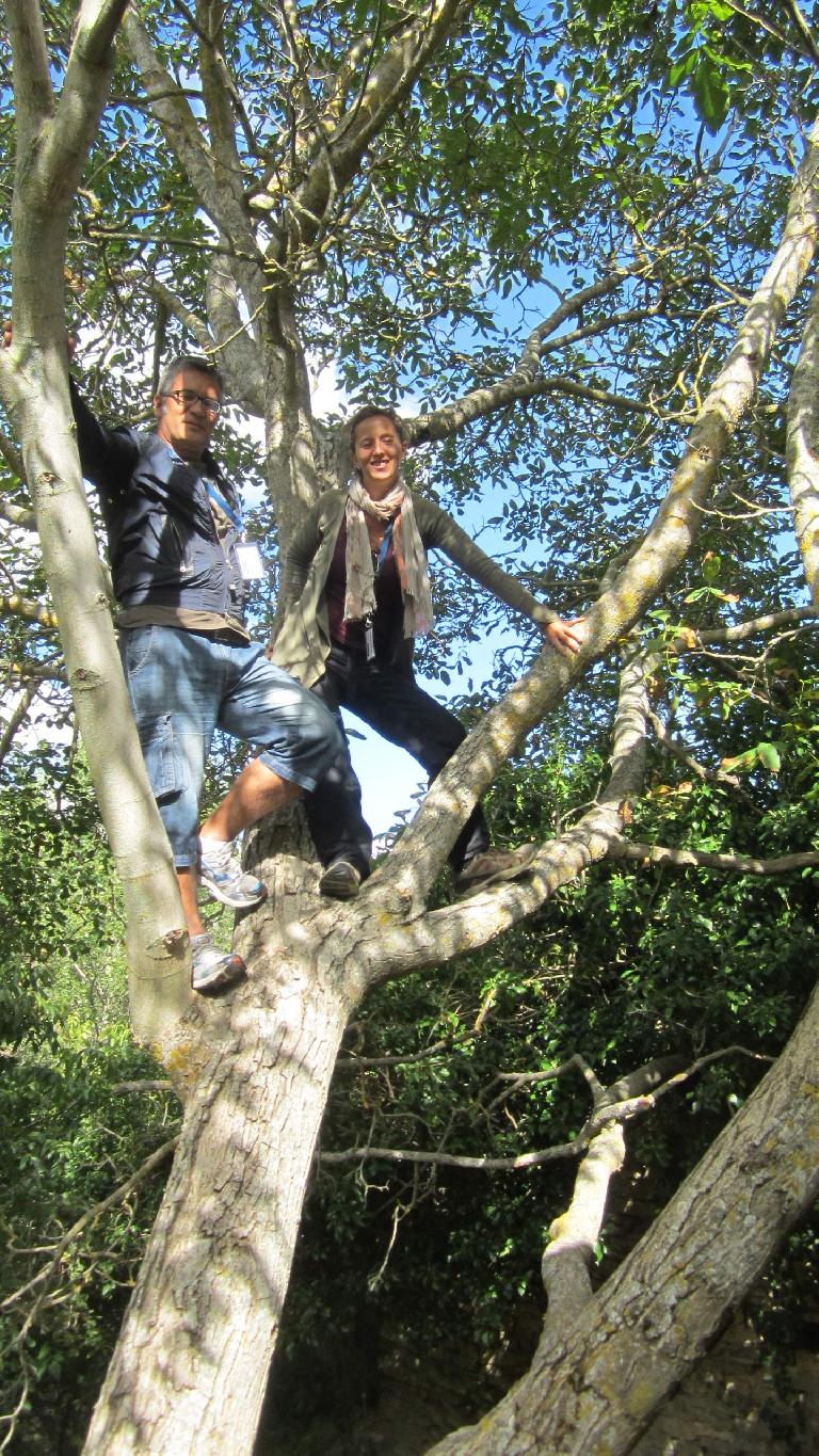 Antonio and Barbara in a tree. (August 26, 2013)