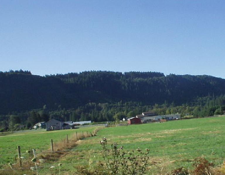 Continuing north along Washington State Route 503, one passes by lots of farms and barns.