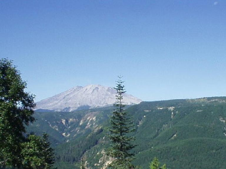 Mt. St. Helens in the distance.  Prior to its catastrophic eruption on May 18, 1980, it was much pointier than it is now!