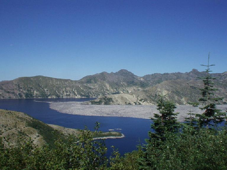 The land around Spirit Lake near Mt. St. Helens looked kind of barren due to all of the volcanic ash.