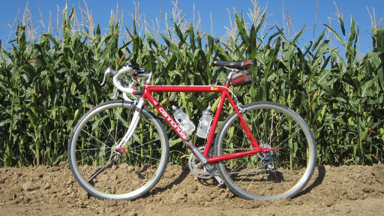 Corn and Cannondale.