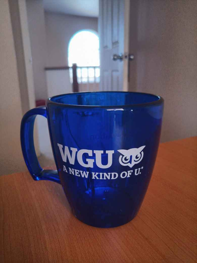 A blue plastic mug from Western Governors University.
