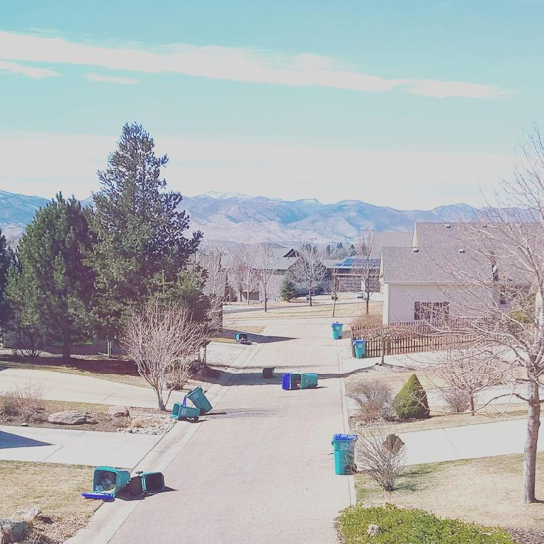 turquoise garbage cans knocked over, Fort Collins